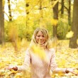 Young girl in the autumn forest — Stock Photo #18005707