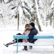 Couple in winter park — Stock Photo #18005729