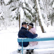Couple in winter park — Stock Photo