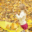 Beautiful little girl in the autumn forest with umbrella — Stock Photo #18005845