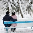 Couple in winter park — Stock Photo #18005919