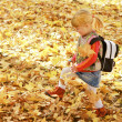Beautiful little girl in the autumn forest — Foto de Stock