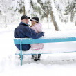 Couple in winter park — Stock Photo #18006067