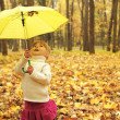 Beautiful little girl in the autumn forest with umbrella — Stock Photo #18006085