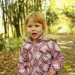 Beautiful little girl in the autumn forest — ストック写真