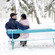 Couple in winter park — Stock Photo #18006109