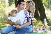 Família no piquenique — Foto Stock