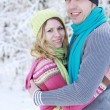 Couple in love in the park in winter — Stock Photo #20133147