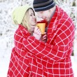 Couple in love in the park in winter — Stock Photo #20133207