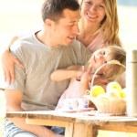 Family at picnic — Stock Photo