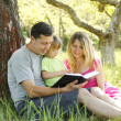 Young family reading the Bible — Stock Photo #25289913