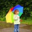 Little girl with an umbrella in the rain — Stock Photo