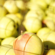 Background of green apples — Foto Stock