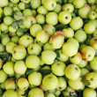A background of green apples — 图库照片