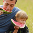 Father with a small daughter eat watermelon on the grass — Stock Photo #41453773