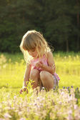 Beautiful little girl playing in nature  — Stock Photo