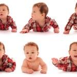 beyaz zemin üzerinde erkek bebek koleksiyonu — Stok fotoğraf #42186099