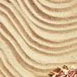 Background of sand on the beach — Stock Photo #47415843
