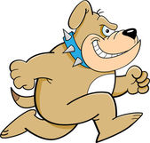 Cartoon Running Bulldog — Stock Vector