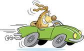 Cartoon dog driving a car — Stock Vector