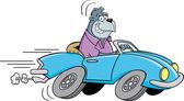 Cartoon gorilla driving a car — Stock Vector