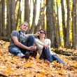 Royalty-Free Stock Photo: The couple in an autumn wood