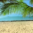 Panorama of tropical beach - Stock Photo