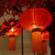 Red lantern Chinese New Year — Foto de Stock