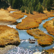 Stock Photo: Mountain Meadow with Creek