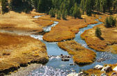 Mountain Meadow with Creek — Stock Photo