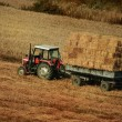 Tractor collecting  straw in the field — Stock Photo