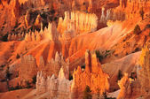 Panorama of Bryce Canyon Utah, USA — Stock Photo