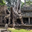 Preah khan cambodia — Stock Photo