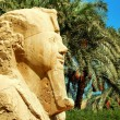 Stock Photo: Alabaster sphinx of Memphis, Egypt