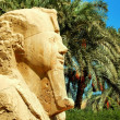 Alabaster sphinx of Memphis, Egypt — Stock Photo #38433941