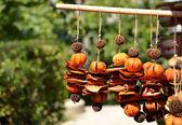 Orange cut and dried — Stock Photo