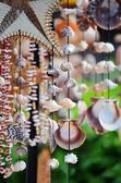 Decorazioni di conchiglie — Foto Stock