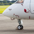 Nose wheel of a jet aircraft - Foto de Stock