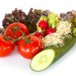 Stock Photo: Lettuce, tomatoes, radishes, cucumber and alfalfa
