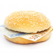 Euro burger with bank notes — Stock Photo
