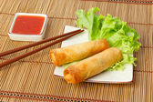 Two fried spring rolls on a plate — Stock Photo