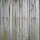 Mossy wooden planks — Stock Photo