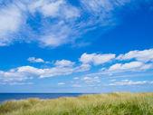 Praia do mar do Norte — Fotografia Stock