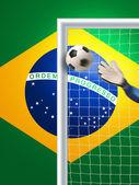 Soccer goal in brazil — Stock Photo
