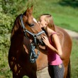 Horsekiss — Stock Photo
