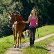 Walking the horse — Stock Photo