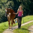 Walking the horse — Stock Photo #13349726