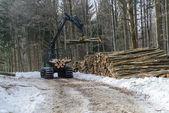Machine for wood working — Stock Photo