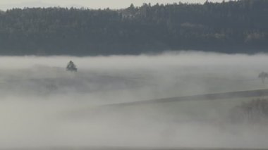 Fog in Austria — Stock Video
