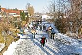 ледовый каток в сельской местности от нидерландов — Стоковое фото
